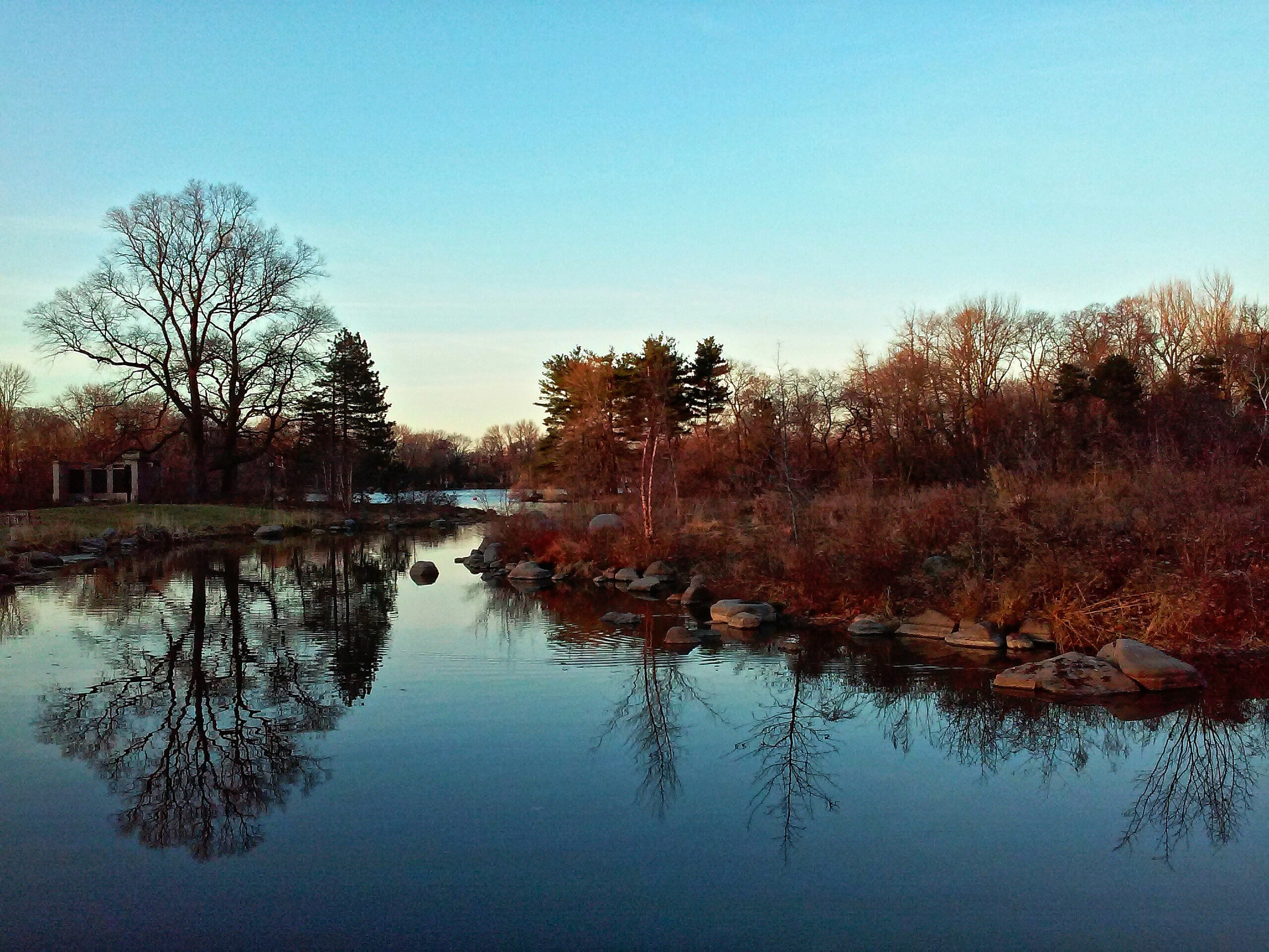 prospect-park-lake-reflection-wbc.jpg
