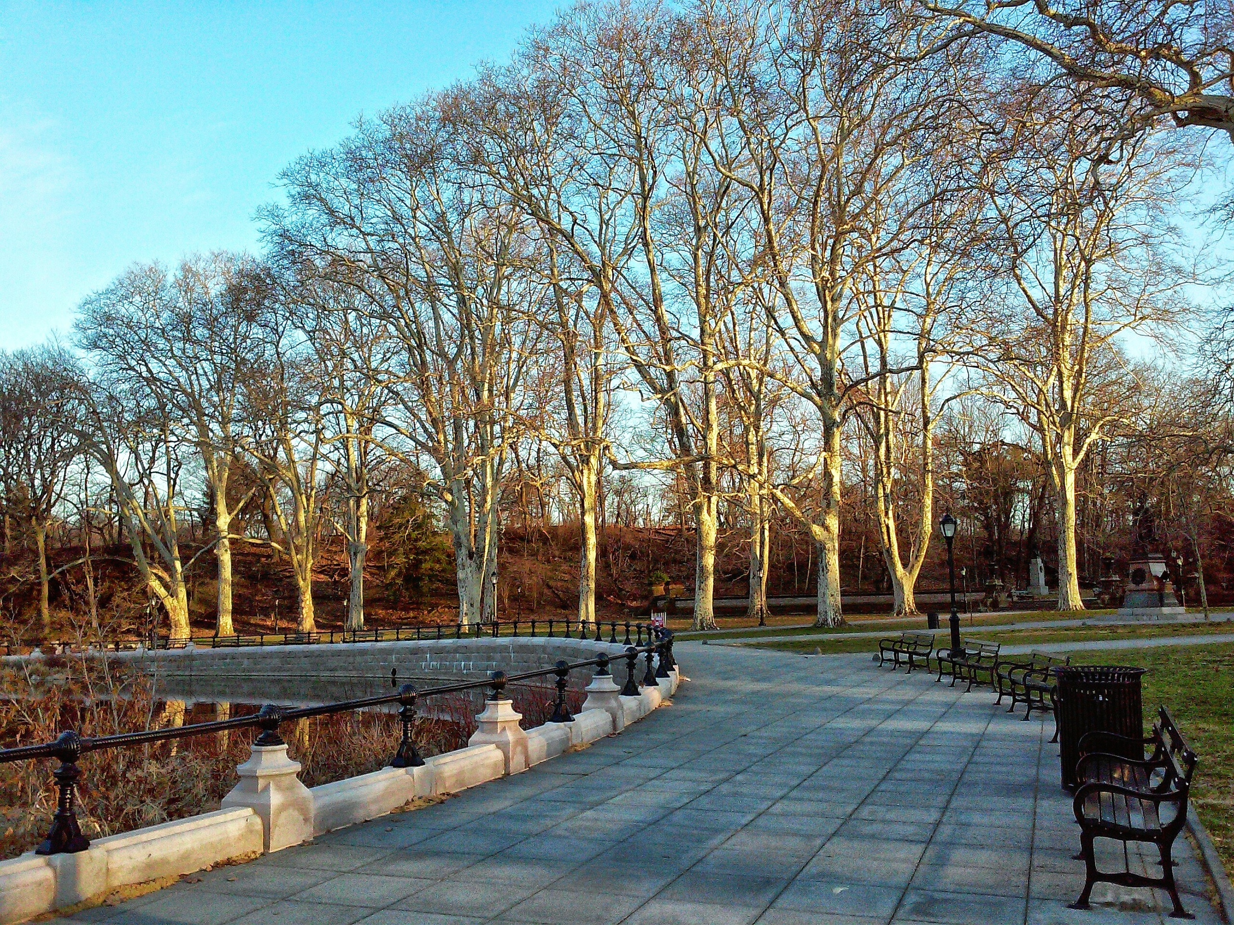 london-planes-in-prospect-park-easter-wbc.jpg