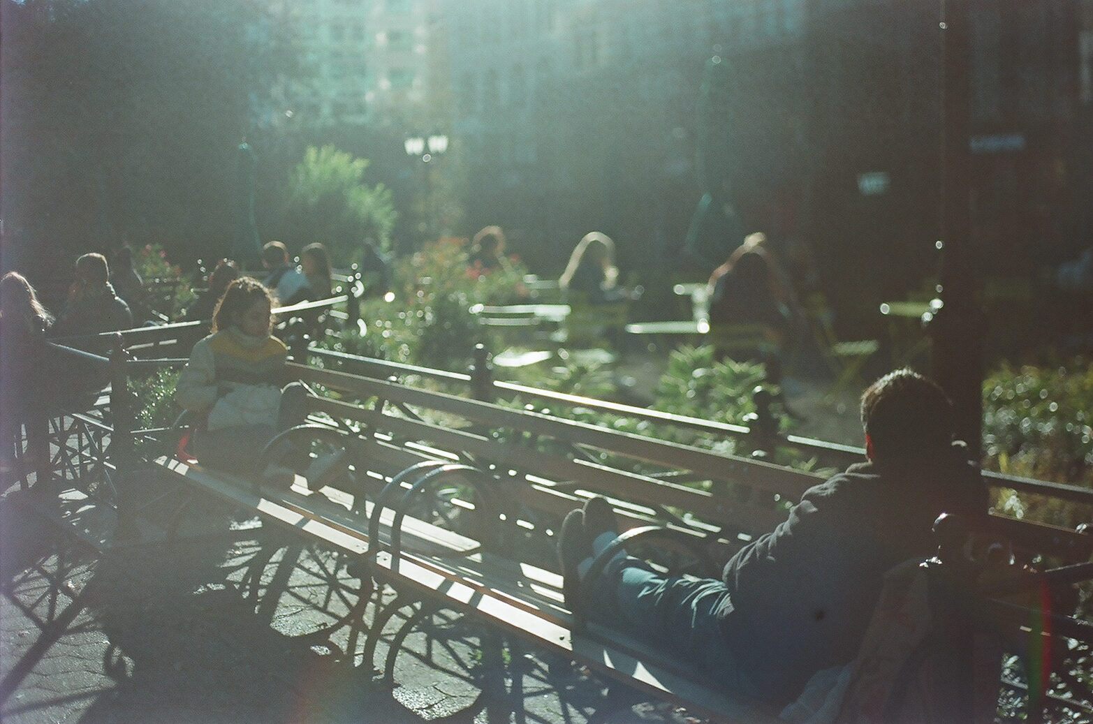 Two People on Bench, Union Square_Film Photography_NYC_Joe Curry Photography_2018.jpg