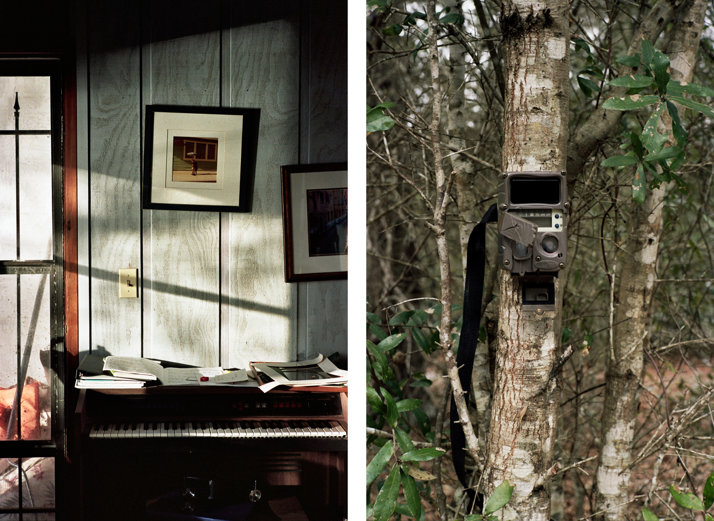 The Goggans Home, Nokomis, Florida , 10 x 15 inches, Digital pigment print, 2016; Trail Camera, Little Orange Creek Nature Preserve, Hawthorne, Florida , 10 x 15 inches, Digital pigment print, 2016