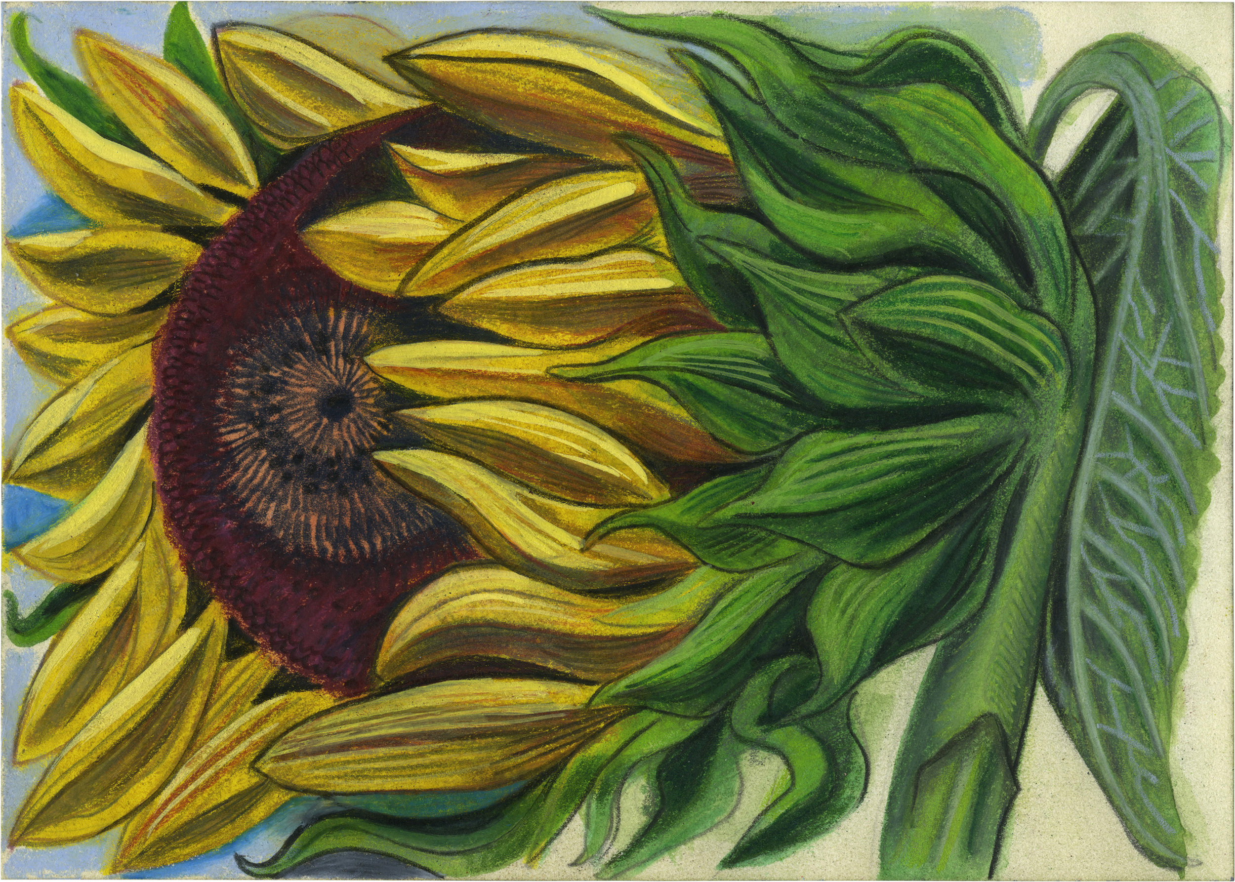 Sunflower,  2019  Mixed media on paper  5 x 7 inches