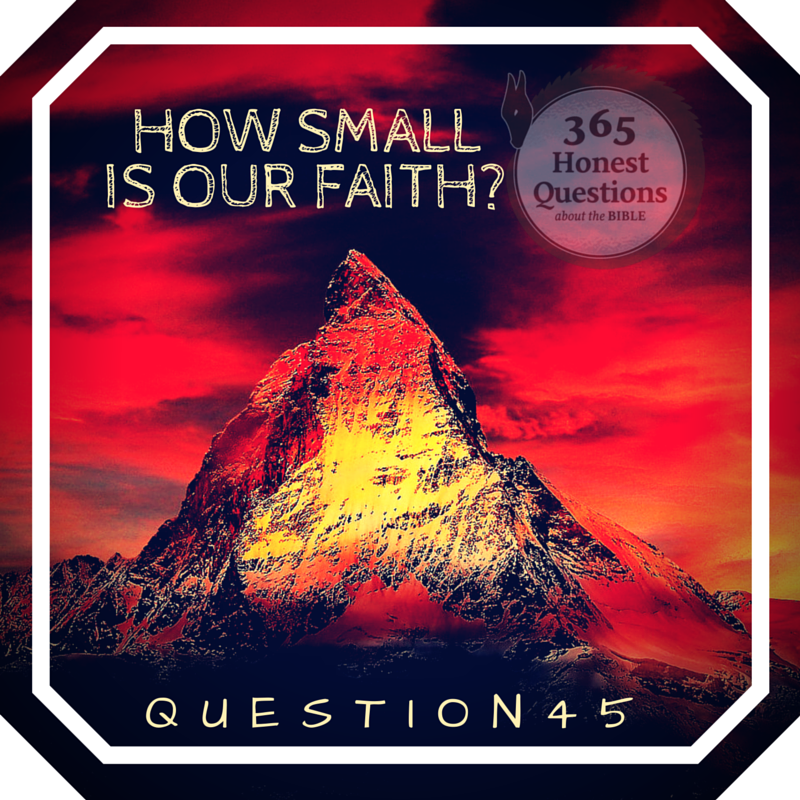 365 Honest Questions, Question 45: How Small is Our Faith?