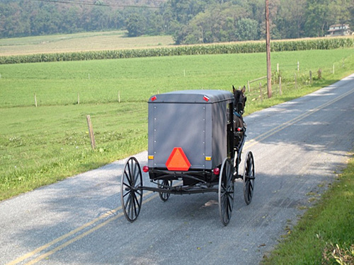 Michigan Horse Car Crash Lawyer