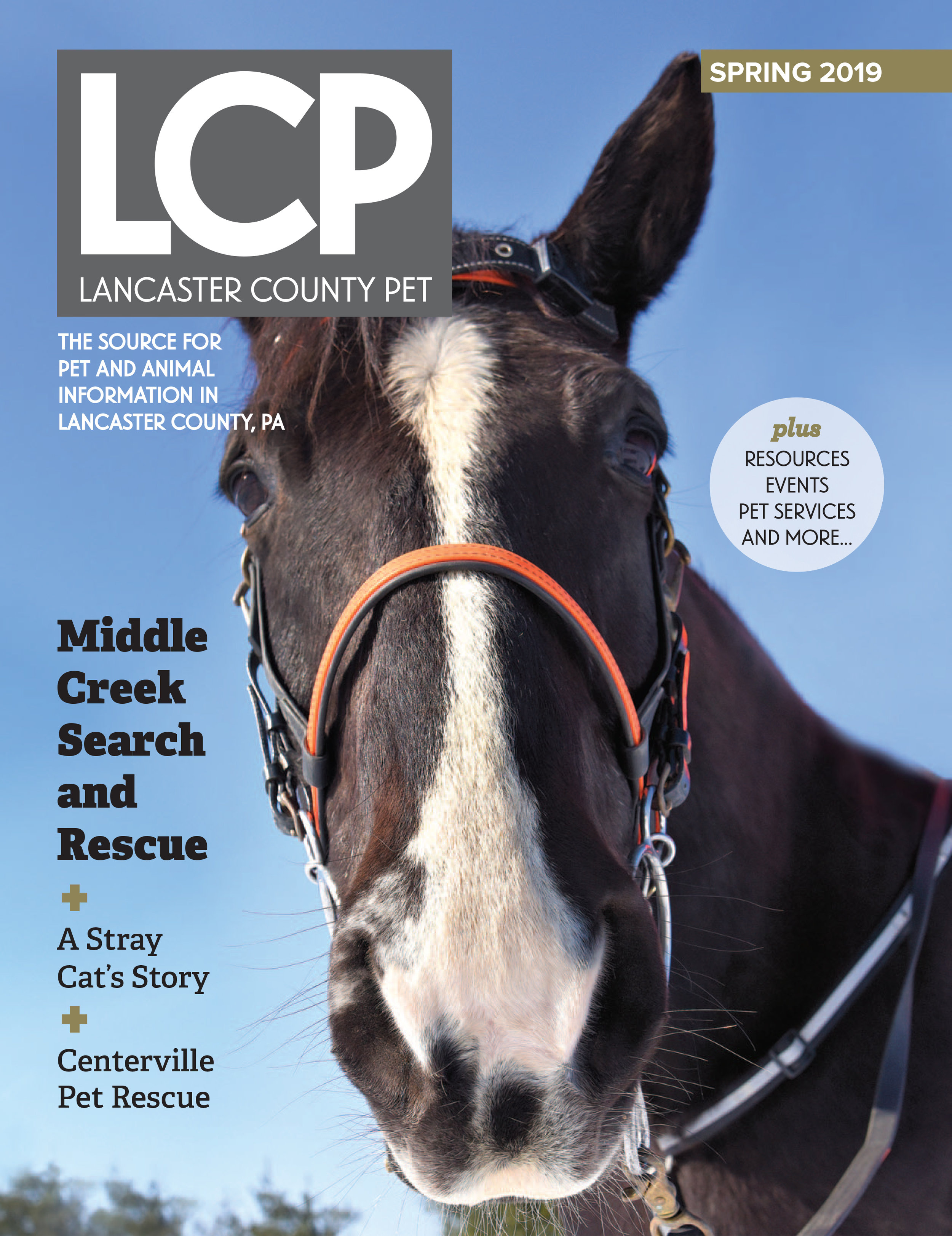 Winter 2019 Issue. Click on image to view.