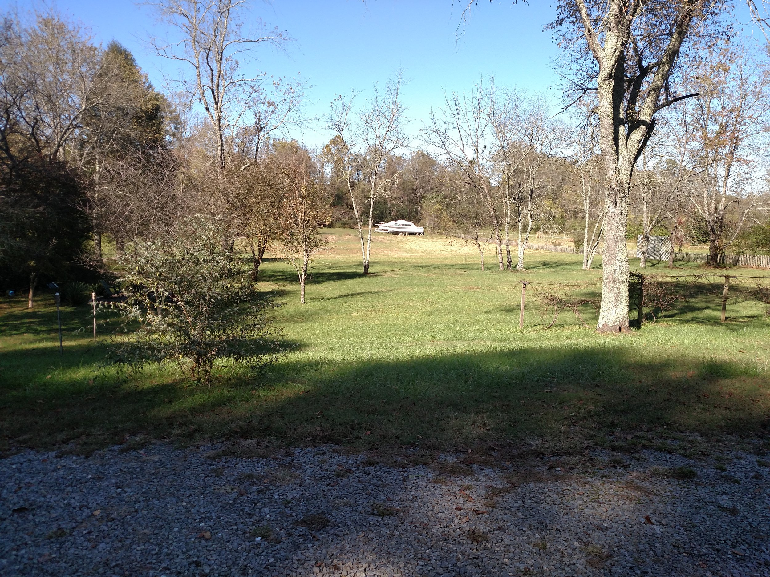 1 FRONT YARD MOST OF THE PROPERTY IS HERE.jpg