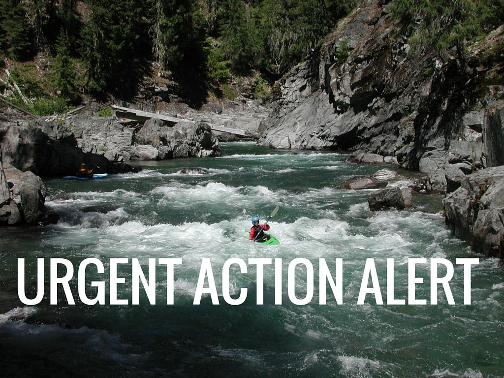 URGENT ACTION ALERT.jpg