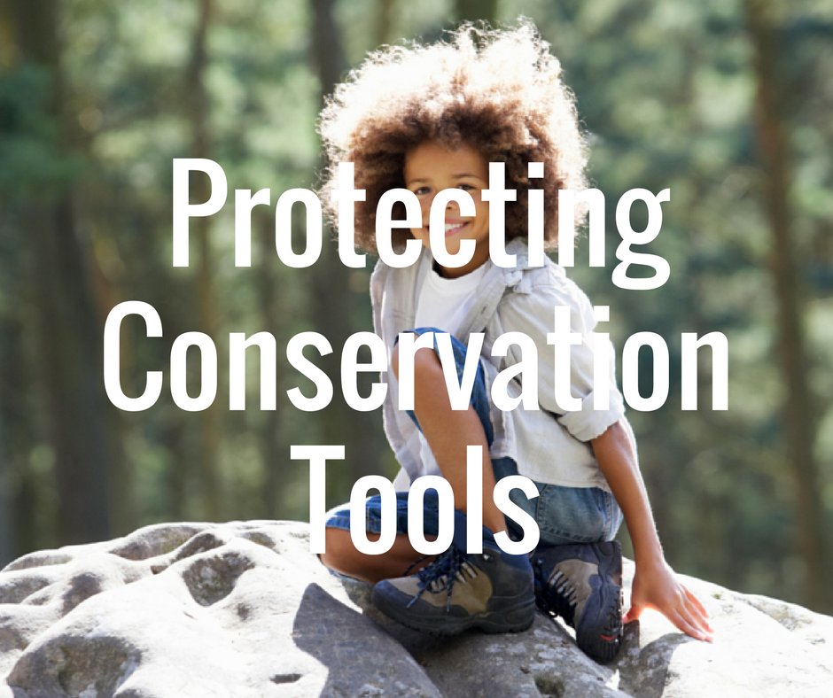 Conservation Tools.png