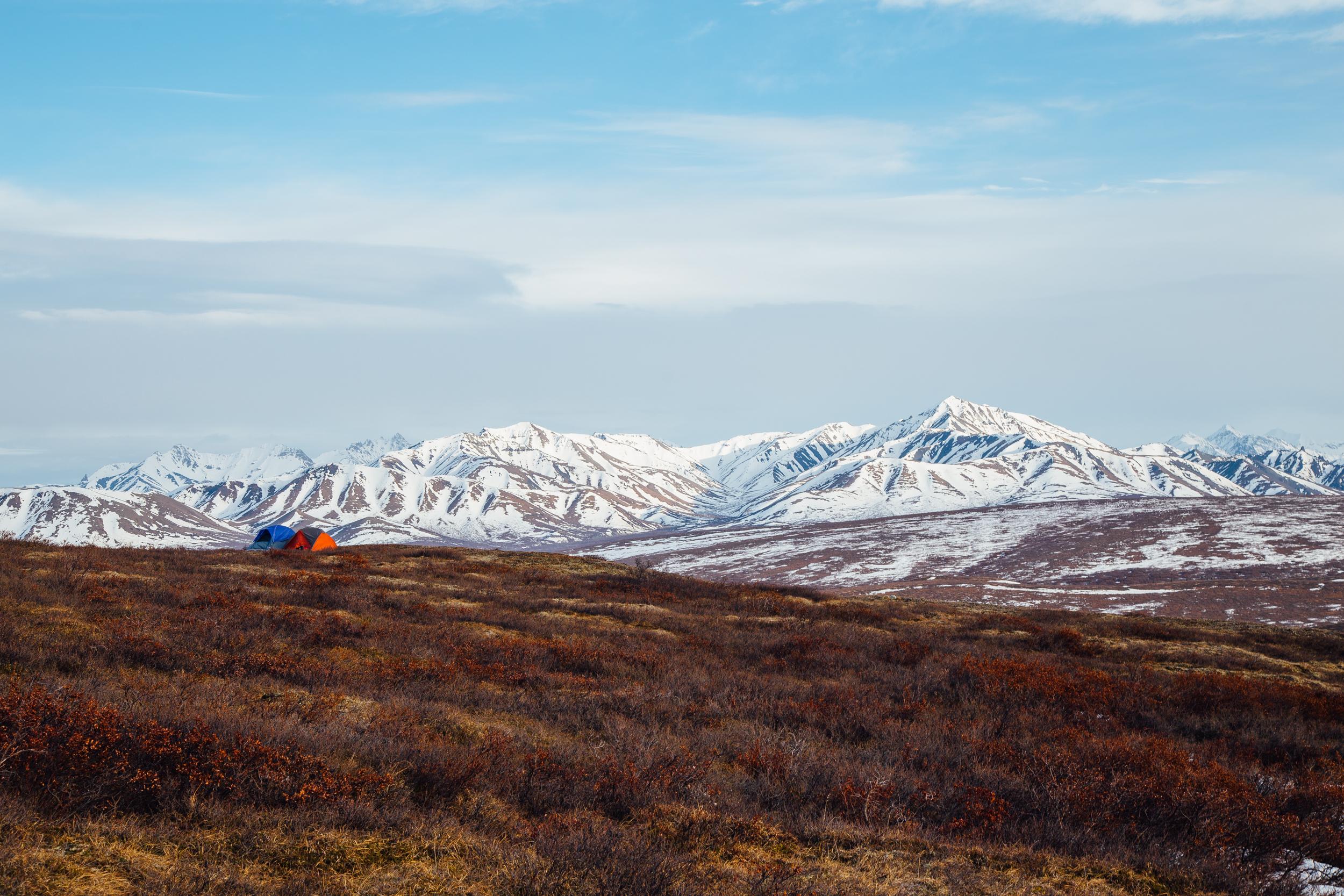 Denali National Park, photo credit: Hunter Day Photography