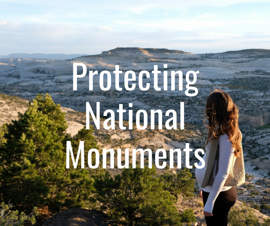 "The Administration and Congress have engaged in a spate of recent attacks on the Antiquities Act and land protected as National Monuments in order to facilitate energy development. Specific threats include the ""National Monuments Creation and Protection Act"" (H.R. 3990) and the ""Improved National Monument Designation Process Act"" (S. 33), both which would destroy the Antiquities Act as a meaningful conservation tool."