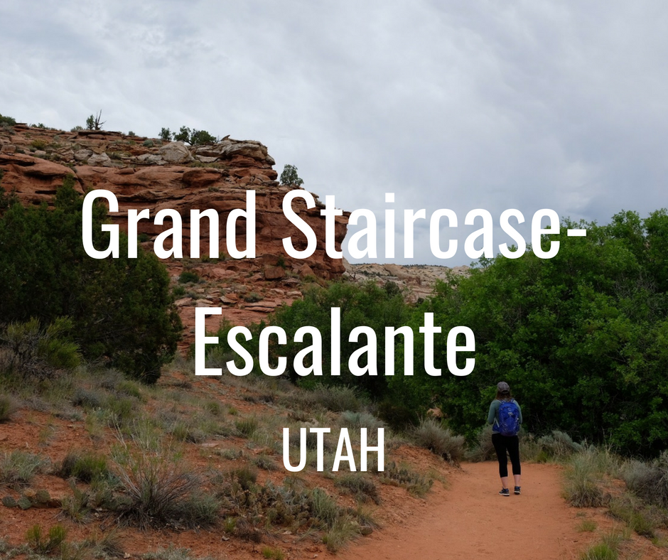 "Outdoor Alliance opposes legislation—including the ""Grand Staircase-Escalante Enhancement Act"" (H.R. 4558)— which give legislative sanction to the recent illegal reductions of Bears Ears and Grand Staircase-Escalante National Monuments."
