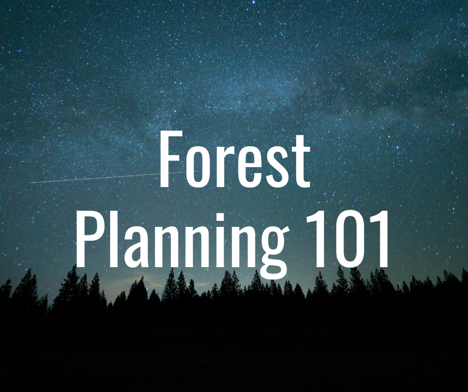 Copy of background on forest planning.png
