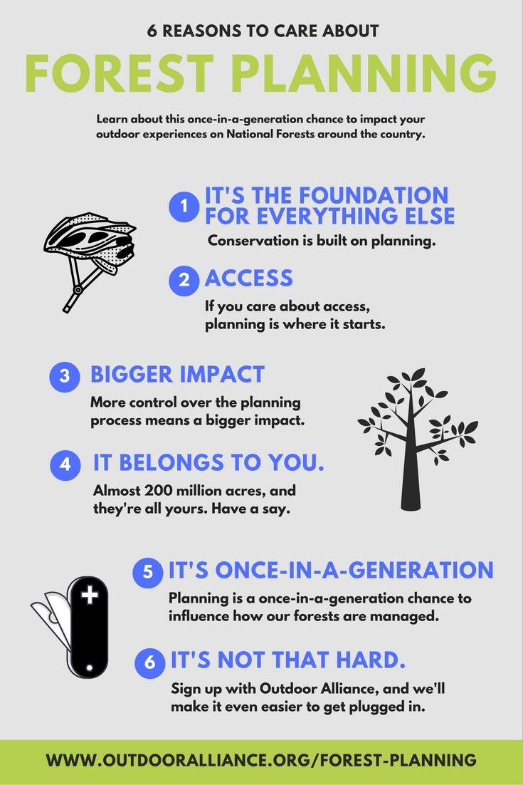 forest planning.jpg