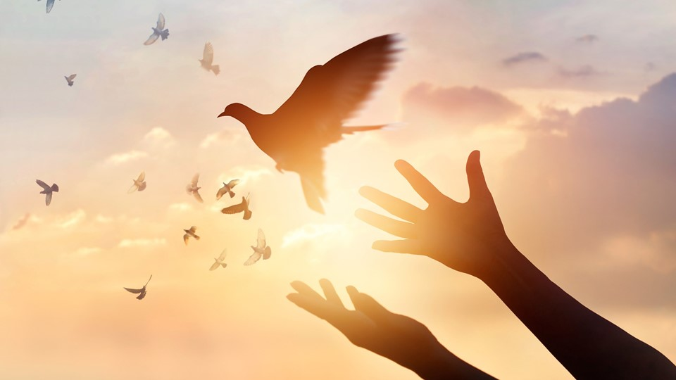 holy spirit.jpg