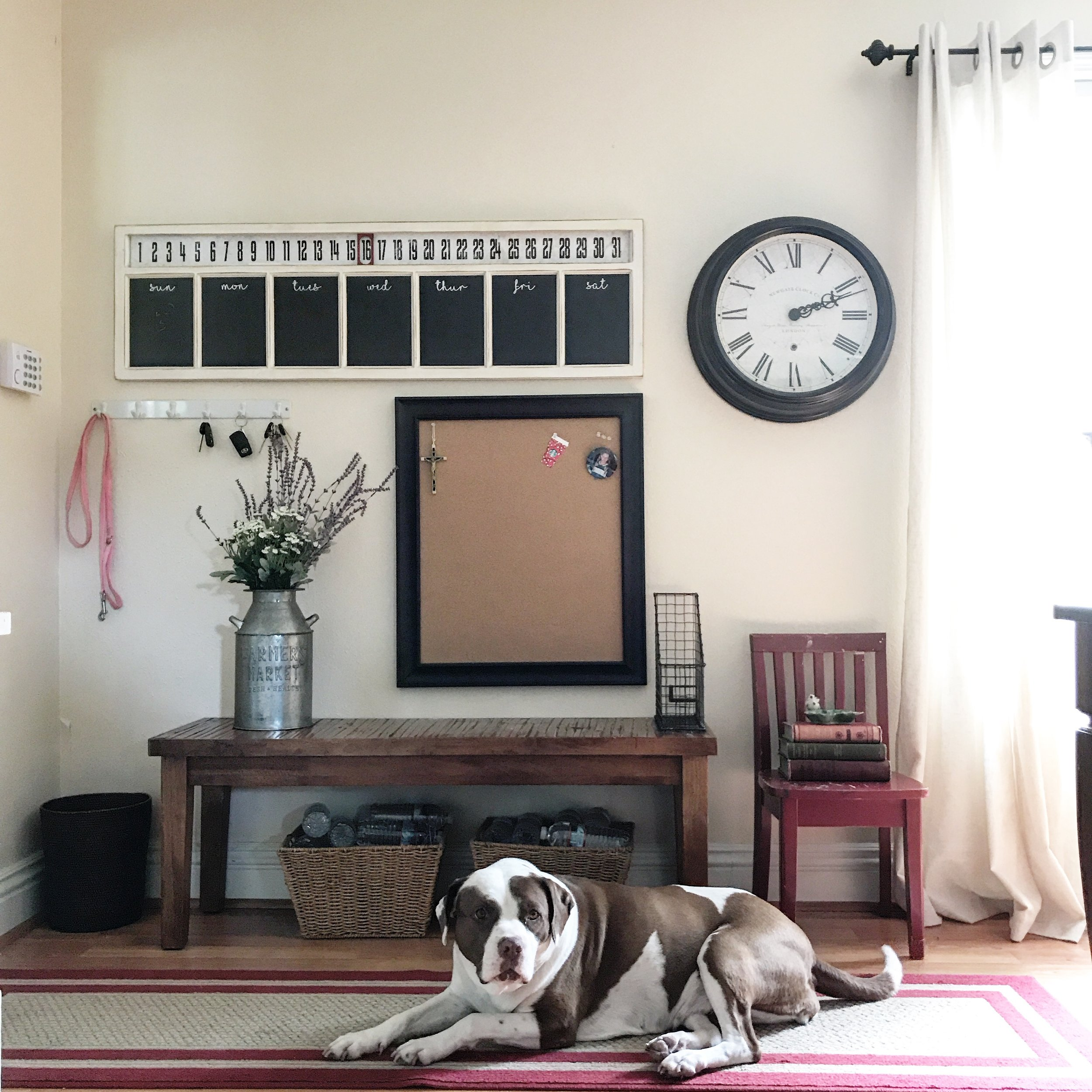 I didn't even tell the dog to lie down there. I was trying to get a good shot and she walked in and positioned herself perfectly for the picture. Because she's psychic. Because she knew I was trying to imitate Pottery Barn. Or at least get 3.2k likes on Pinterest.