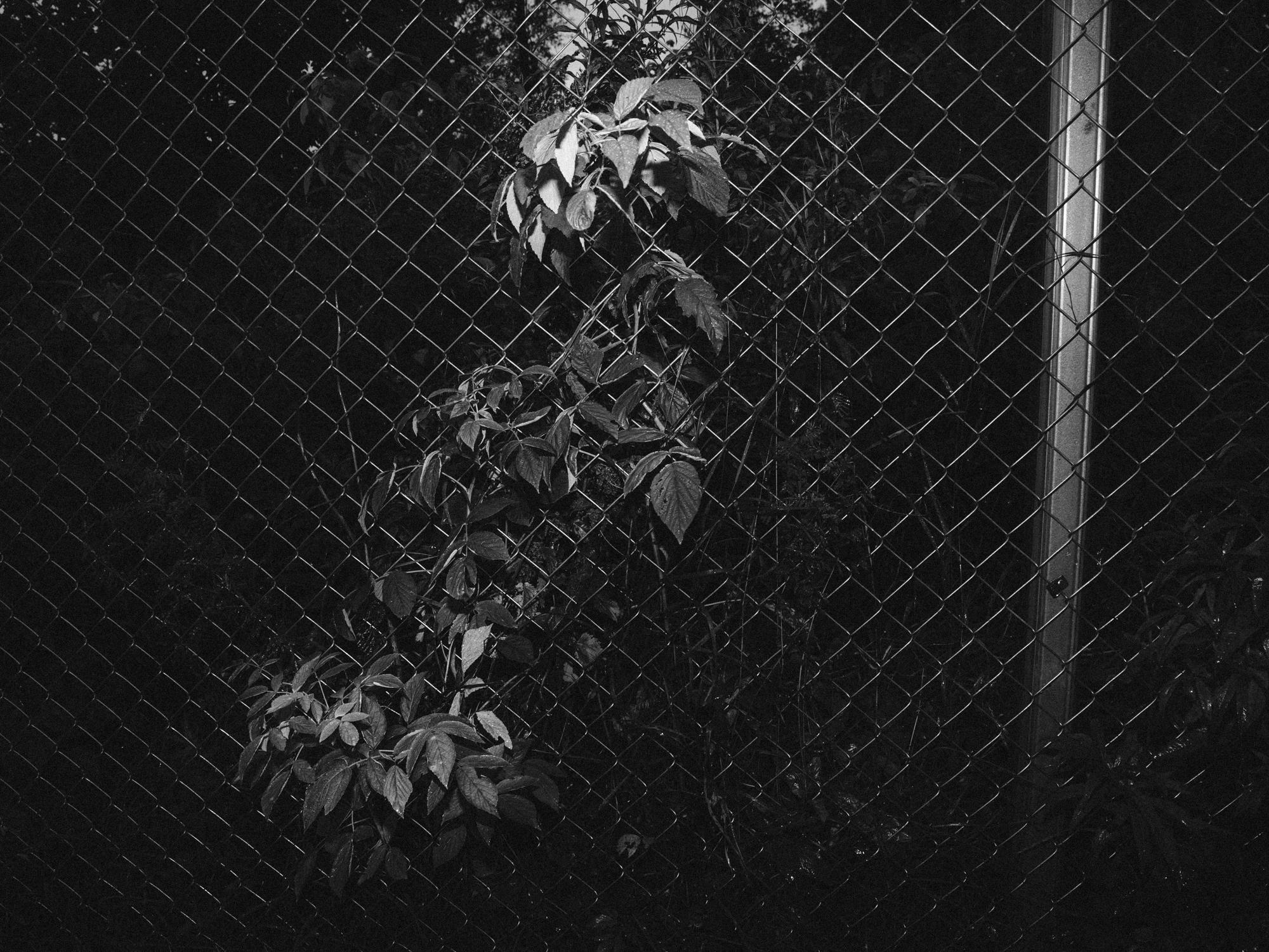 IU_Murha-5.jpg