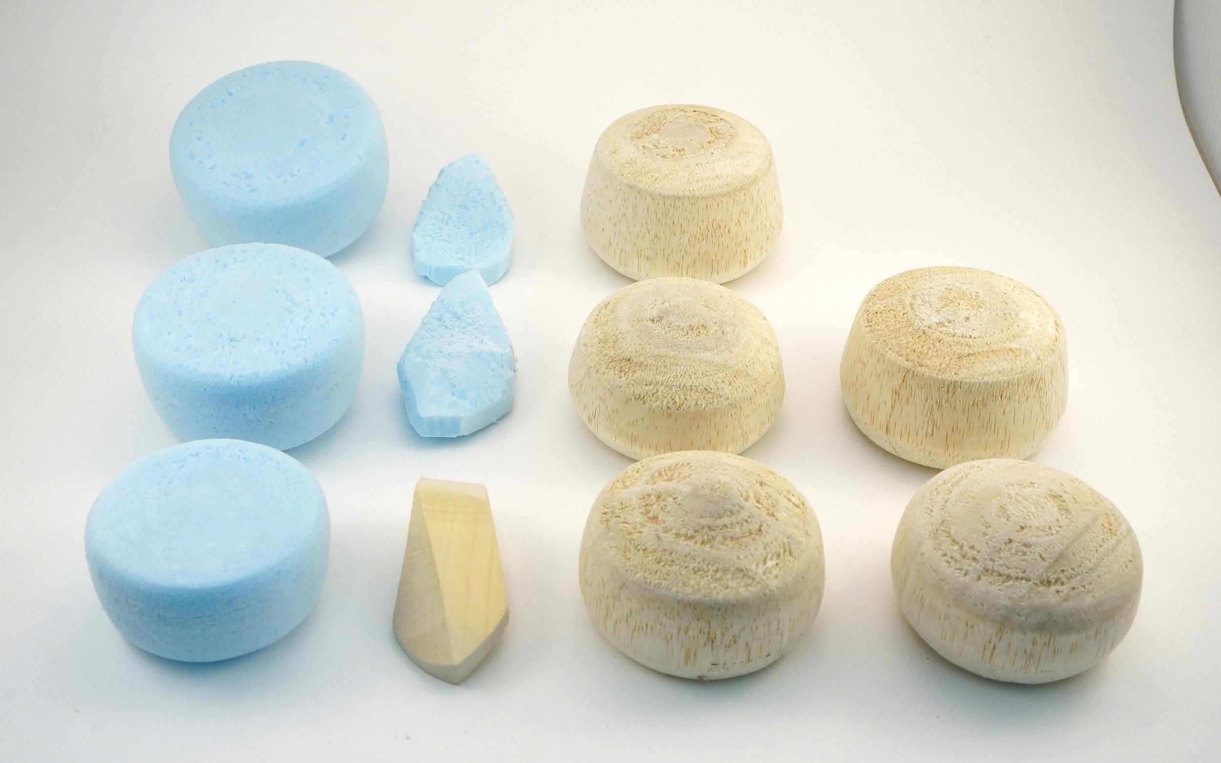 turnip models 2.jpg