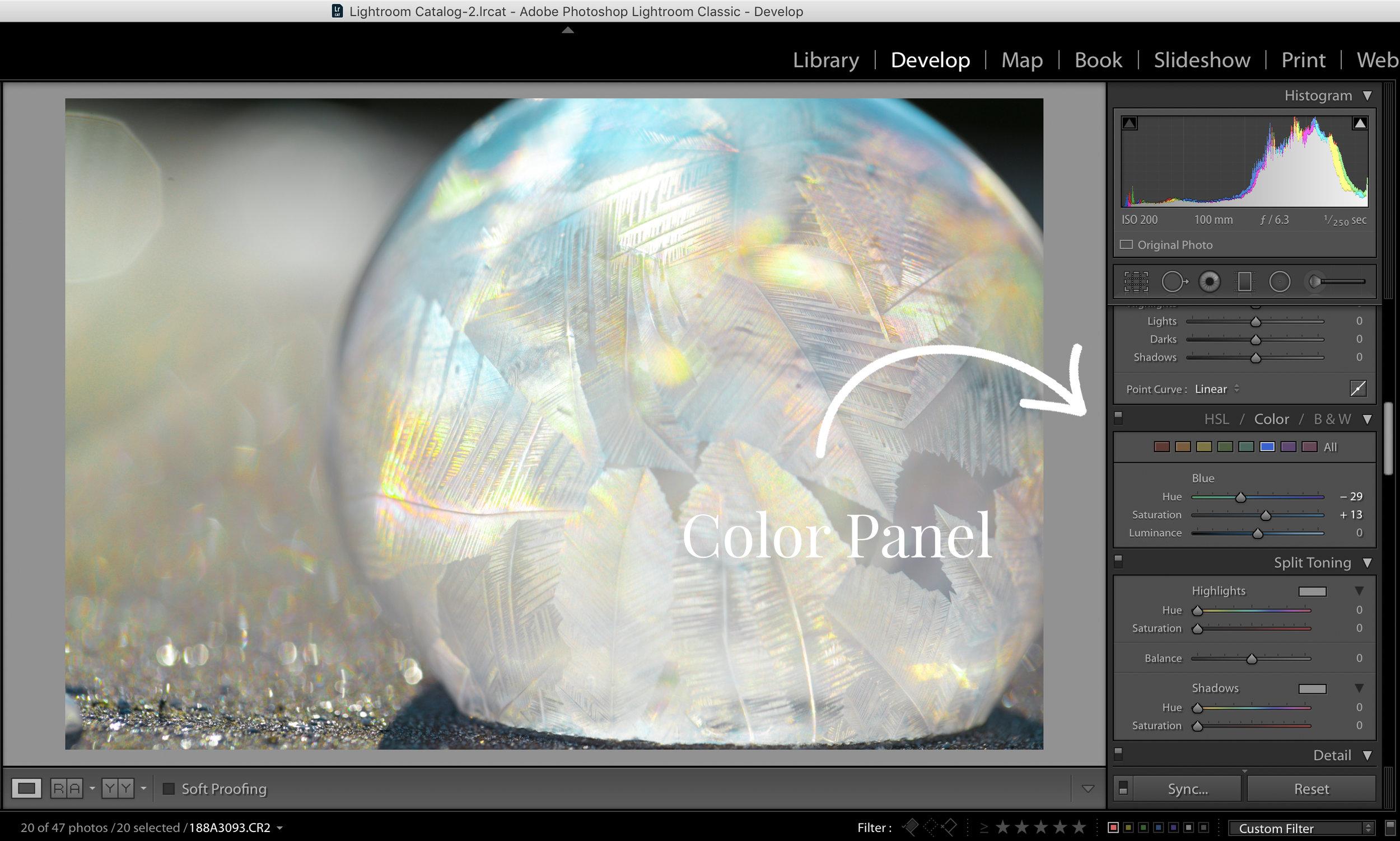 Color Panel.jpg