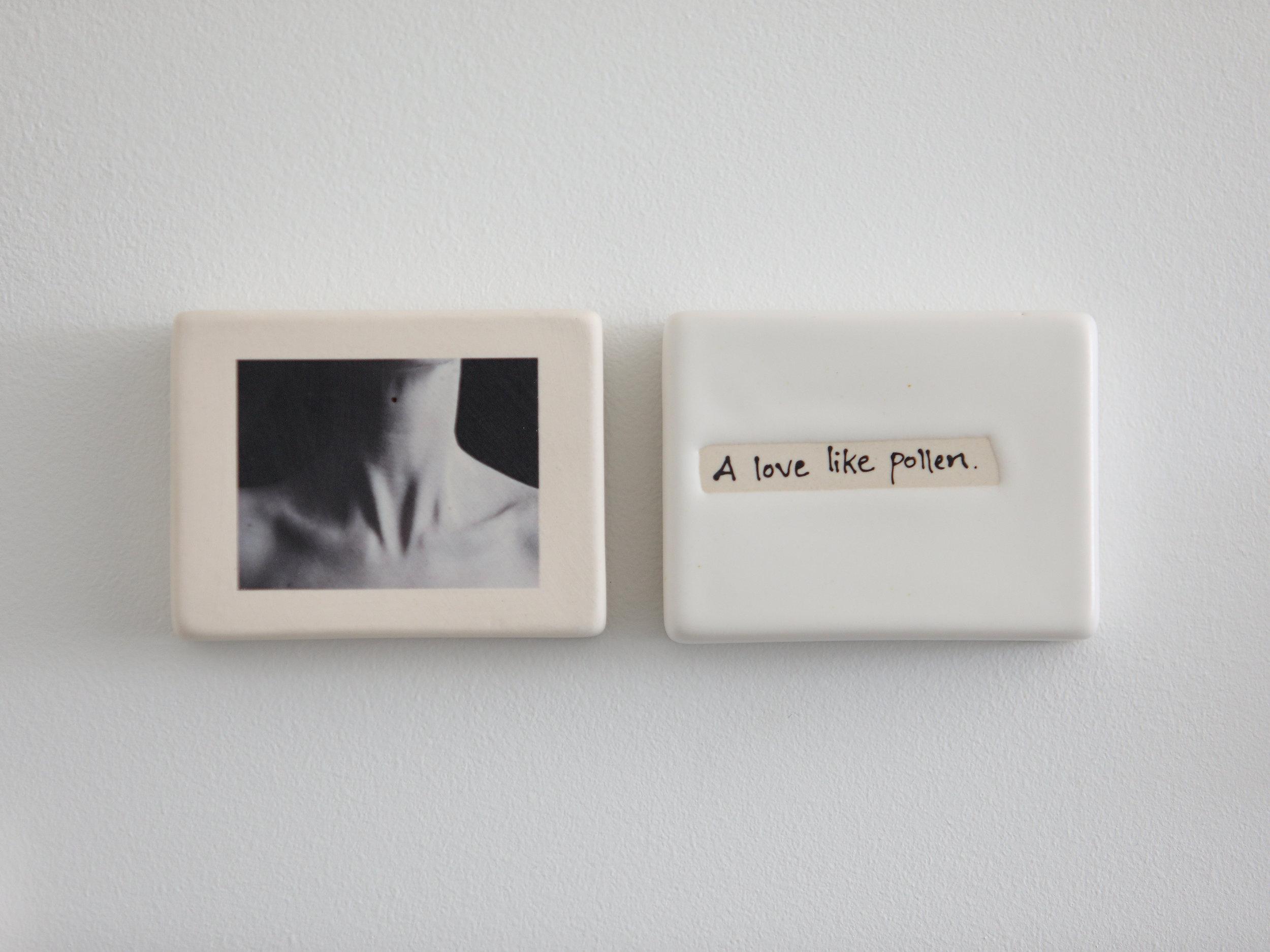 Her, A Love LIke Pollen.jpg