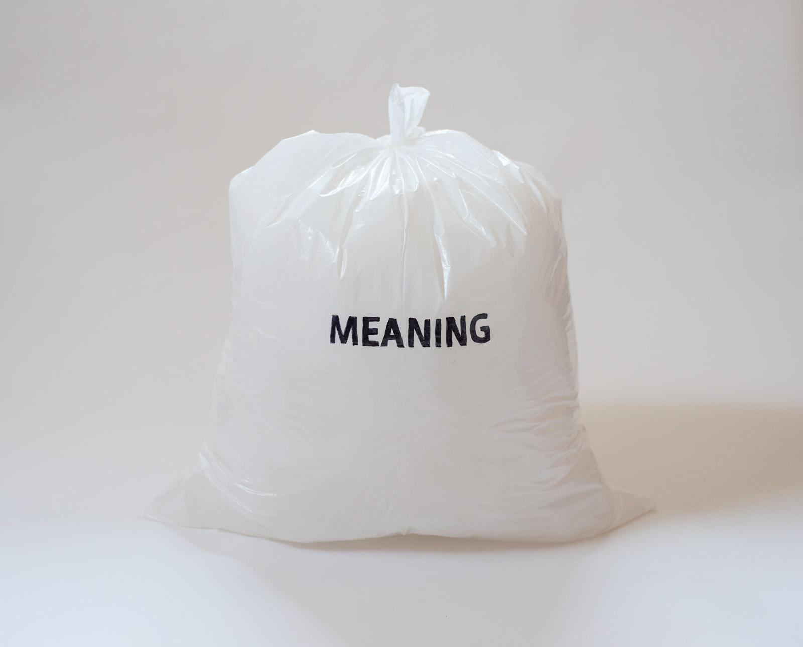 MeaningGarbageEV.jpg