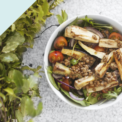 eggplant lentil salad.jpg