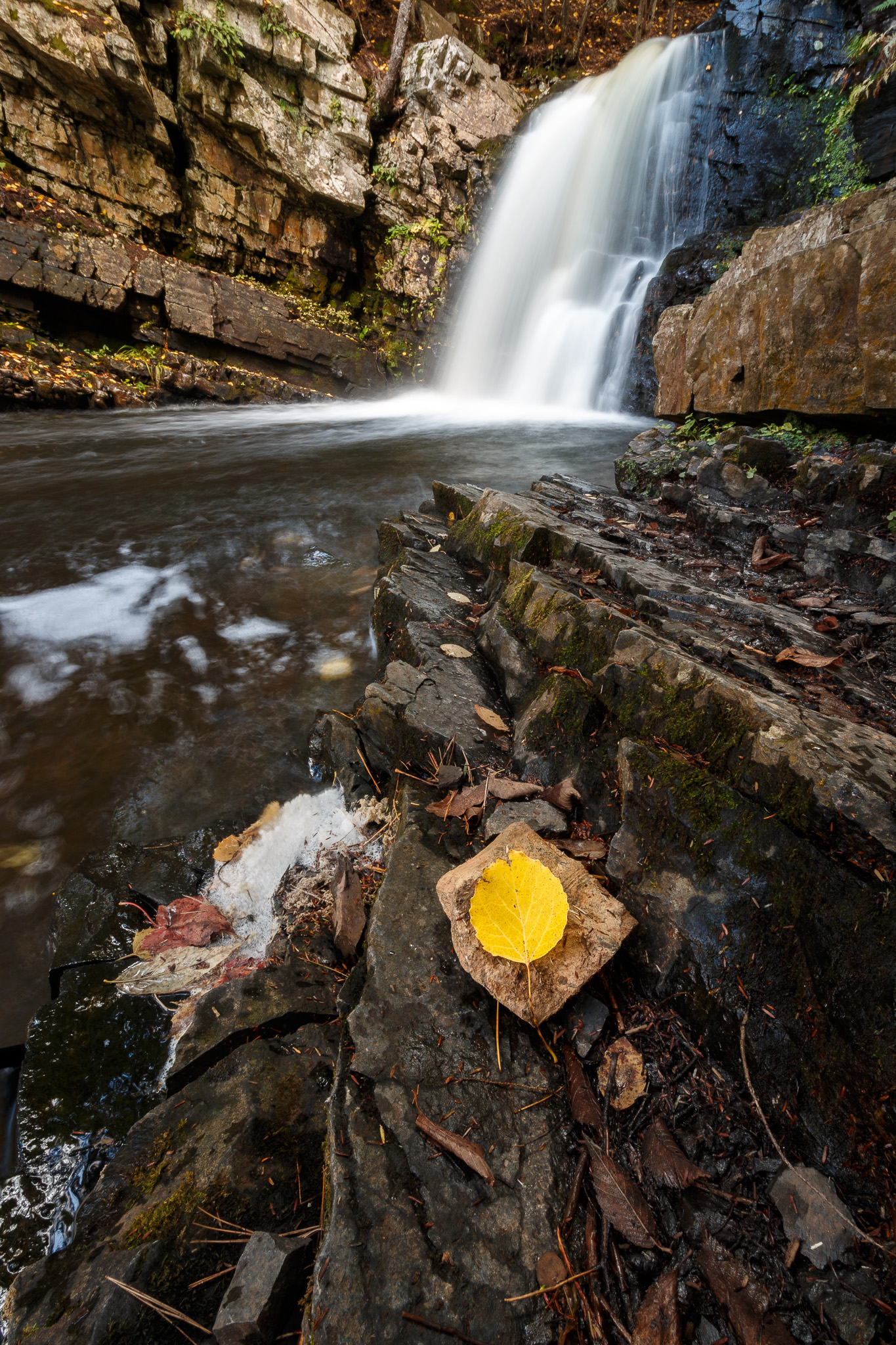Ettinger Falls with Fall Leaf in the Foreground
