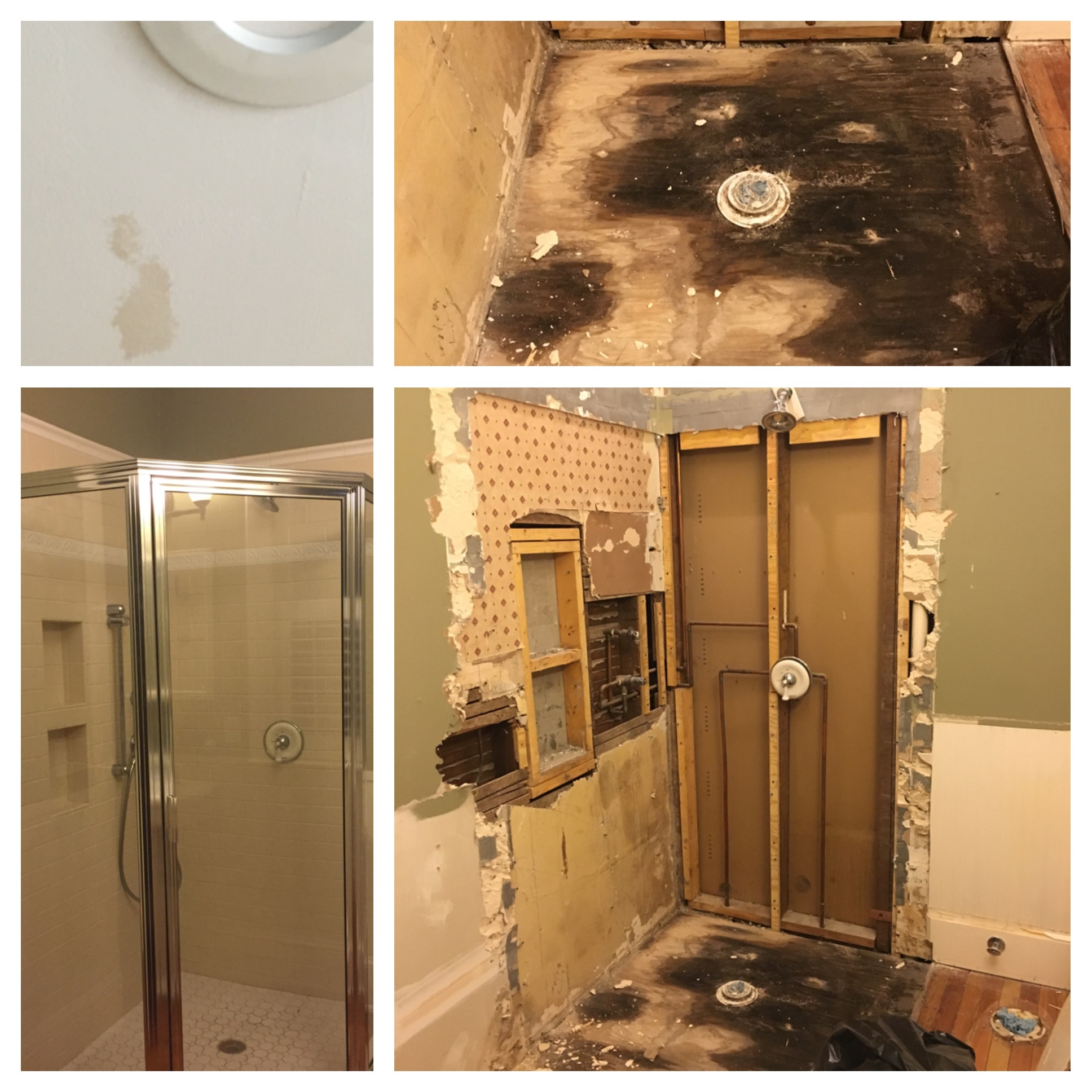 The shower before and after demo.