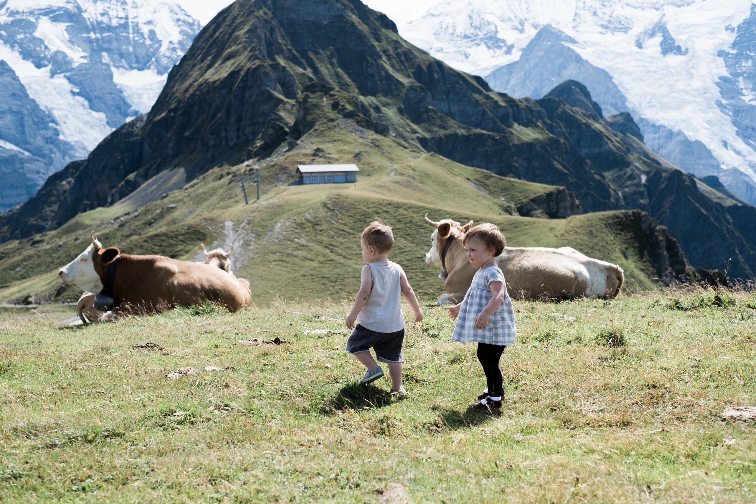 Switzerland-16.jpg