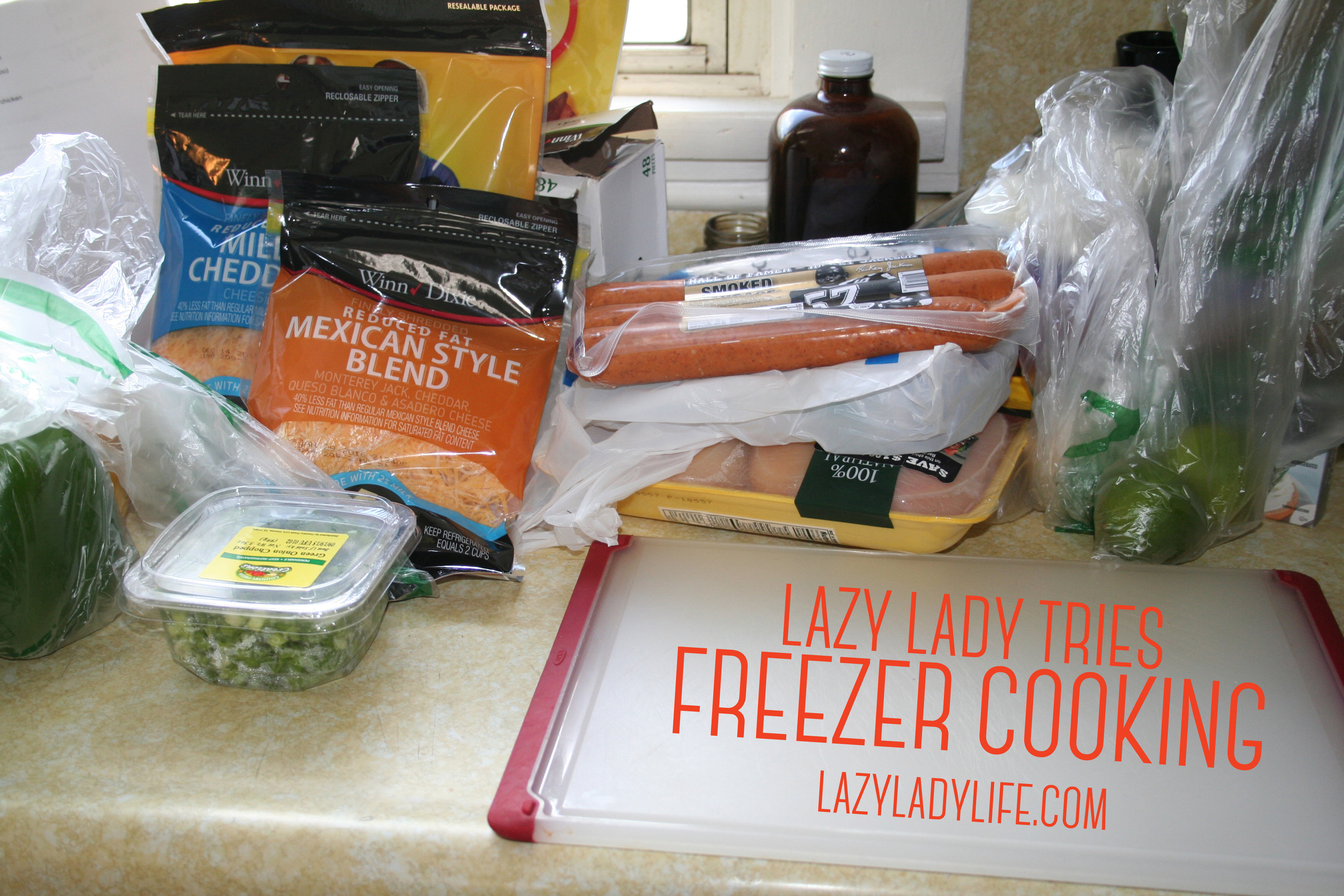 LazyLady-FreezerCooking