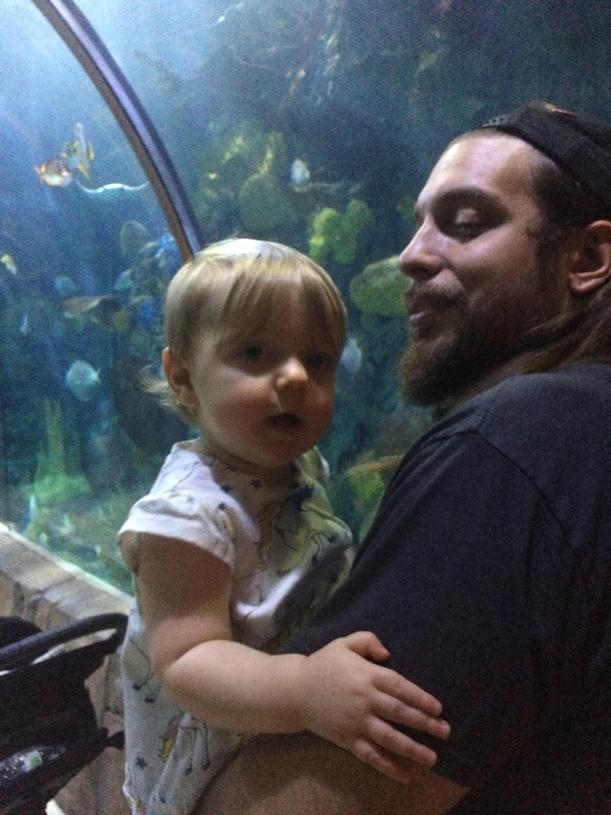 daddy-daughter-aquarium
