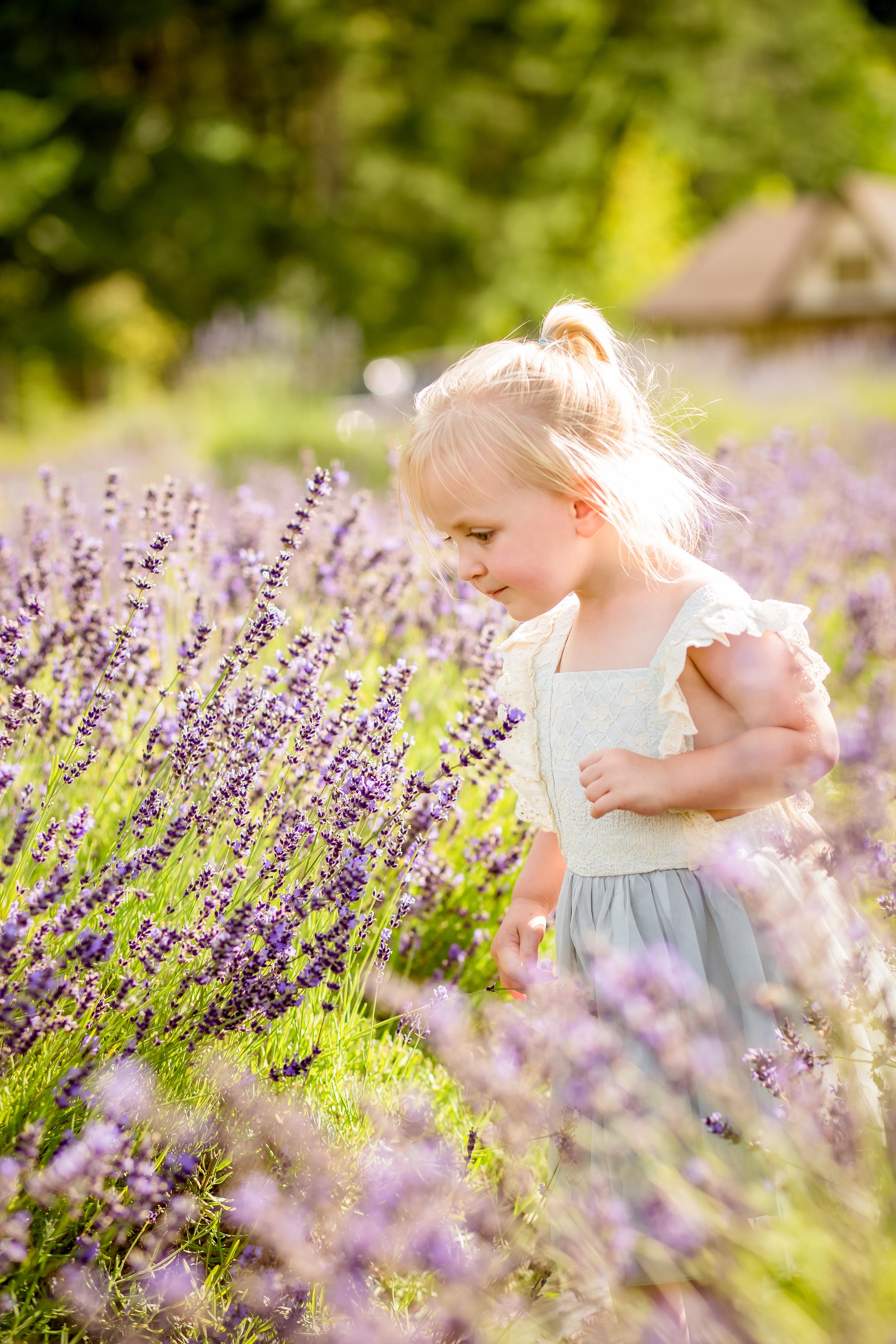 Brittany Christensen, 2nd birthday lavender shoot July 2016 (1 of 1)-11.jpg