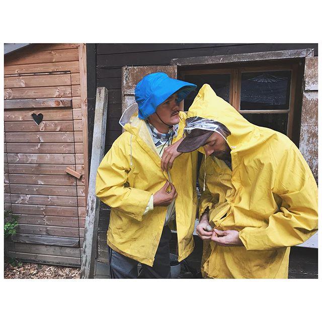 the yellow jackets. . Ims grosse Liebi mit @la_forette . . . . #useimtopf #naturelover #laforette #lastsweater #UncozyTruth