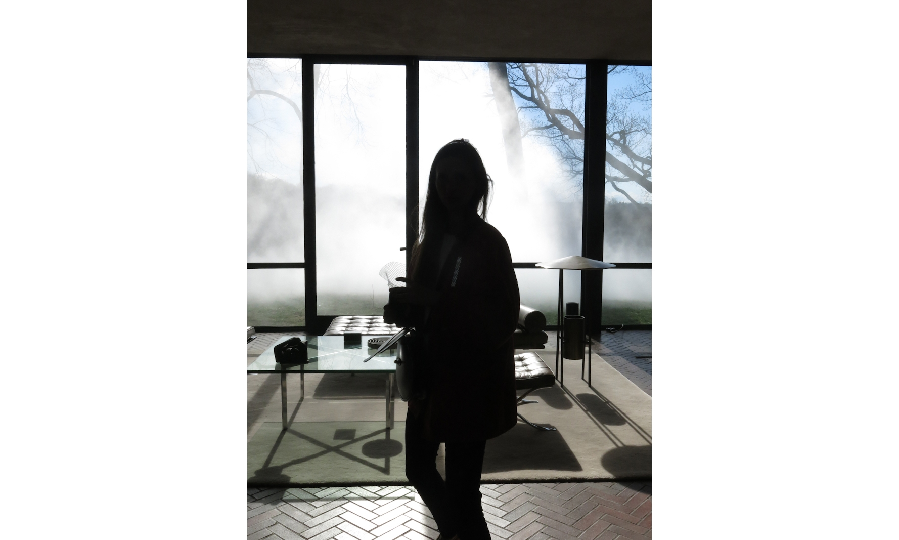 bureau-des-recommandations-travel-the-glass-house-philip-johnson.jpg
