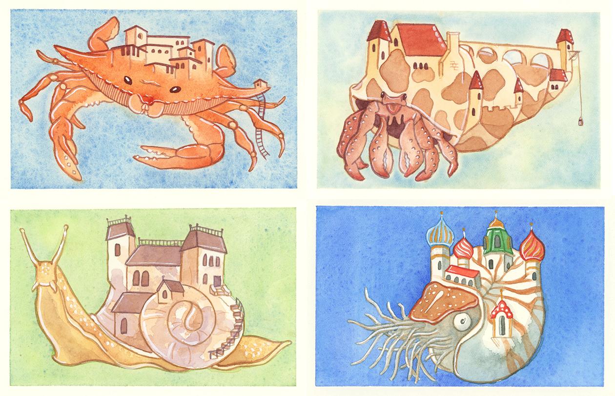 The Architecture of Mollusks & Arthropods
