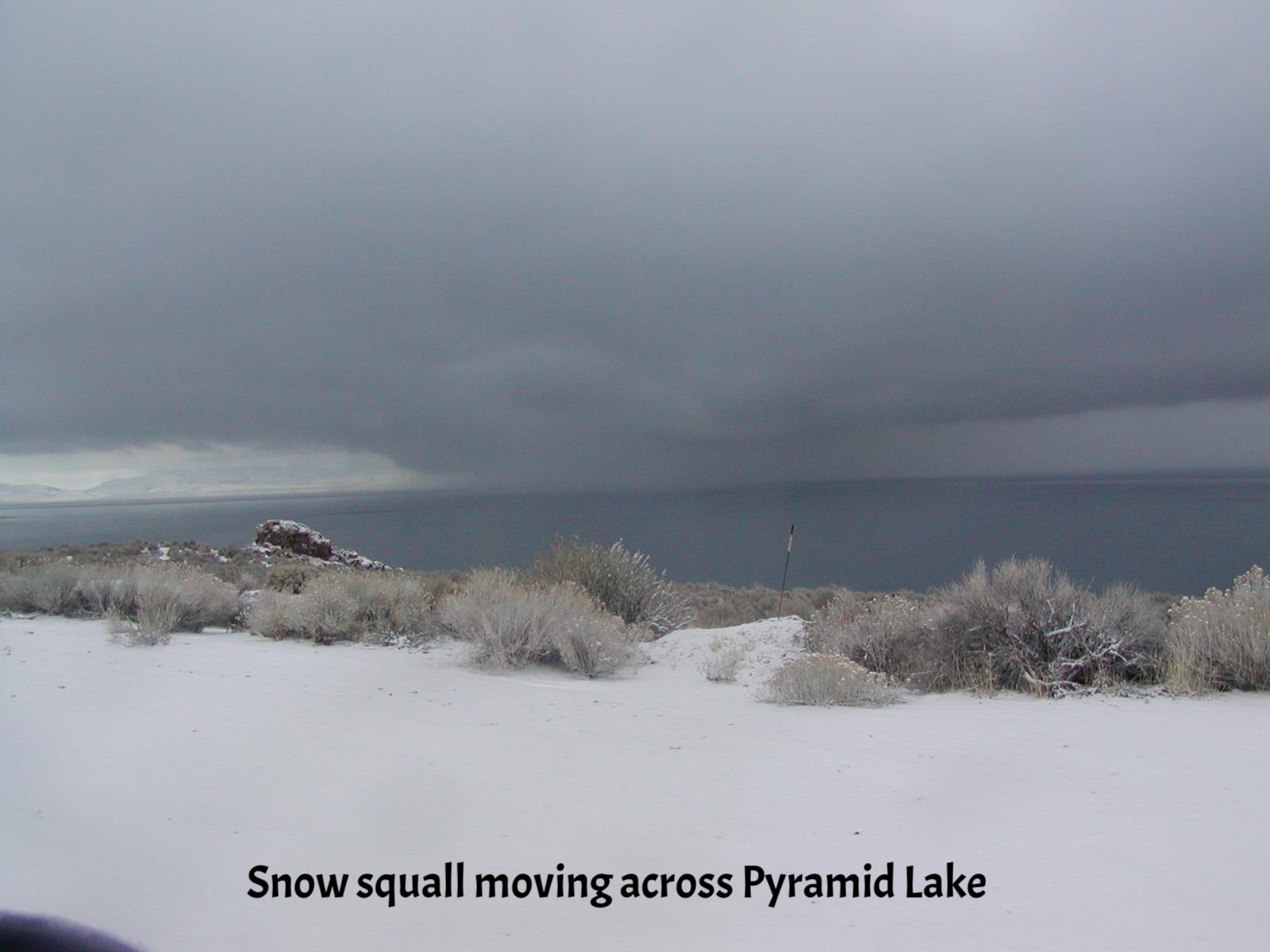 Snow squall on lake.JPG