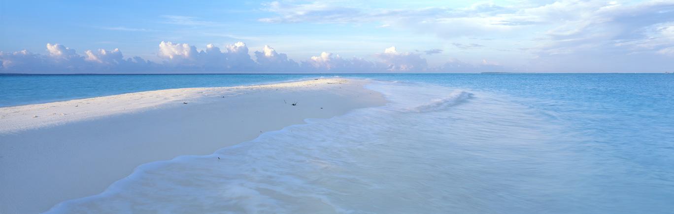 Sandbar at sunrise : Maldives