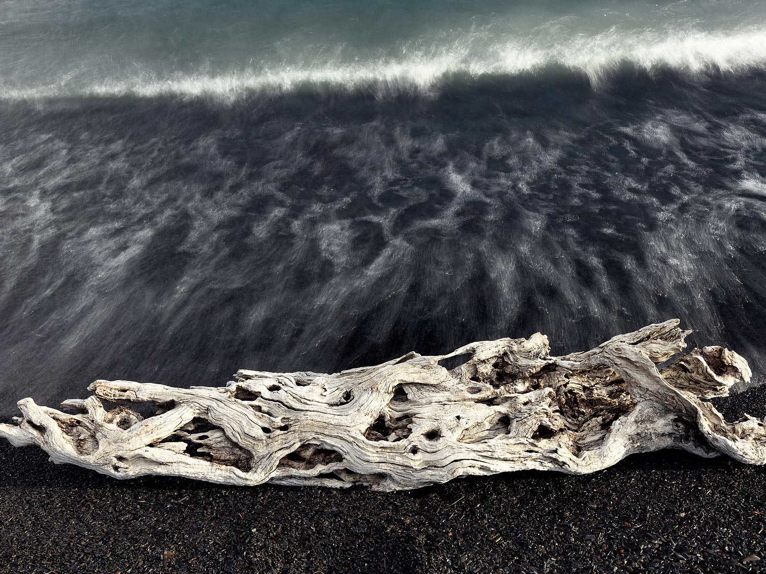 Driftwood on Lagos, Chile 2014