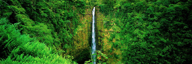 Akaka Falls, Big Island 2013