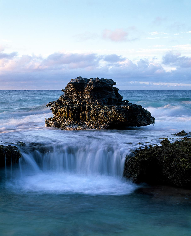 Exposed reef, Oahu 2012