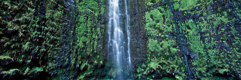 Waimoku Falls, Maui 2015