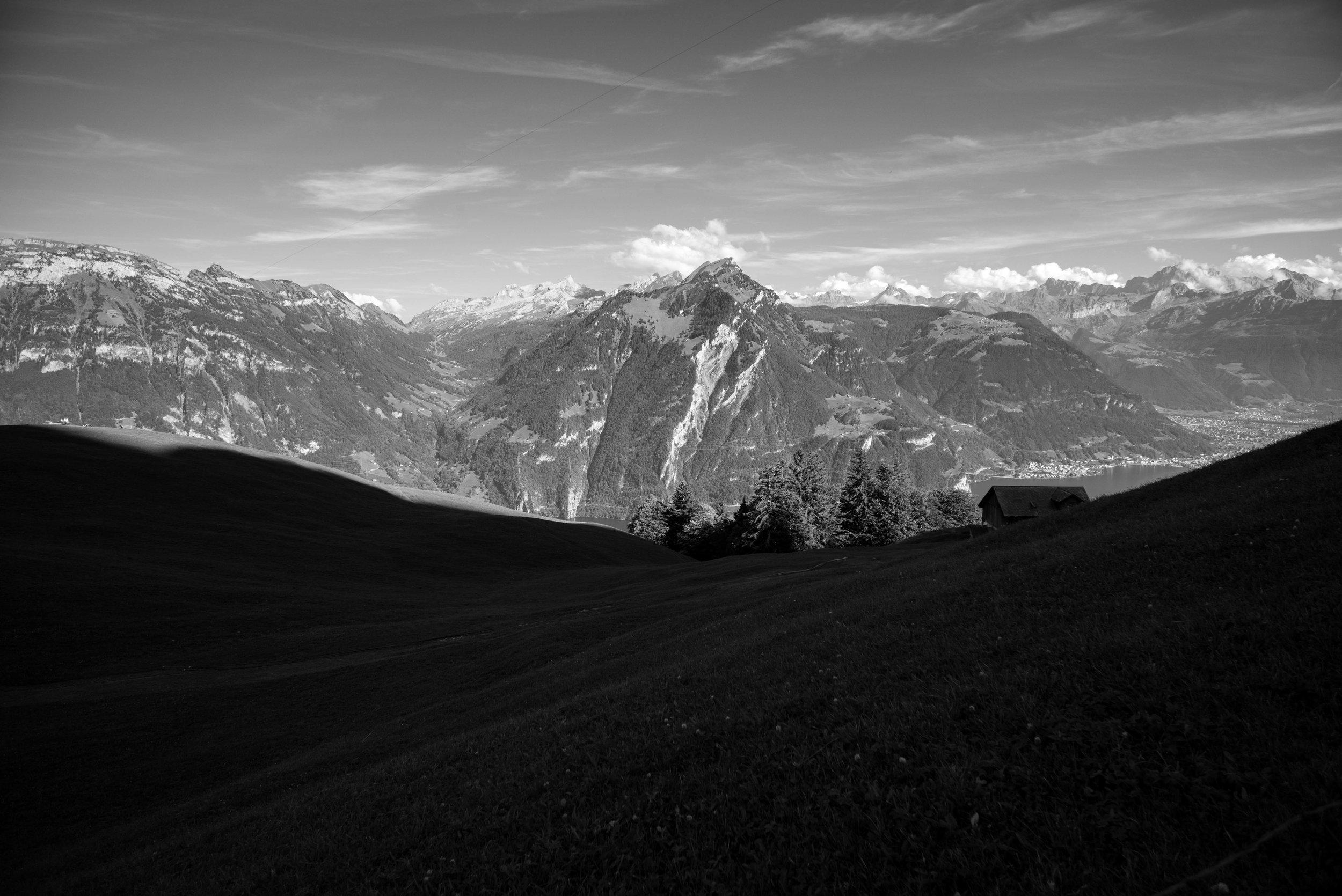 Grassy knoll on Alp Weid    Leica Monochrom 1/180s F22 ISO800