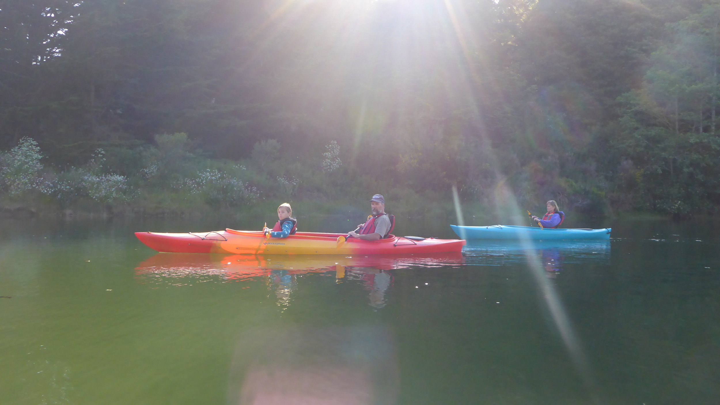 Enjoying a beautiful evening wildlife watching kayak tour on Fort Bragg's Noyo River.