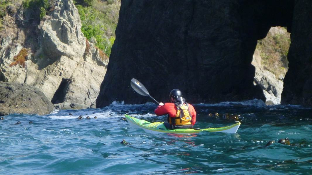 Sea Kayak Training on the Magical Mendocino Coast