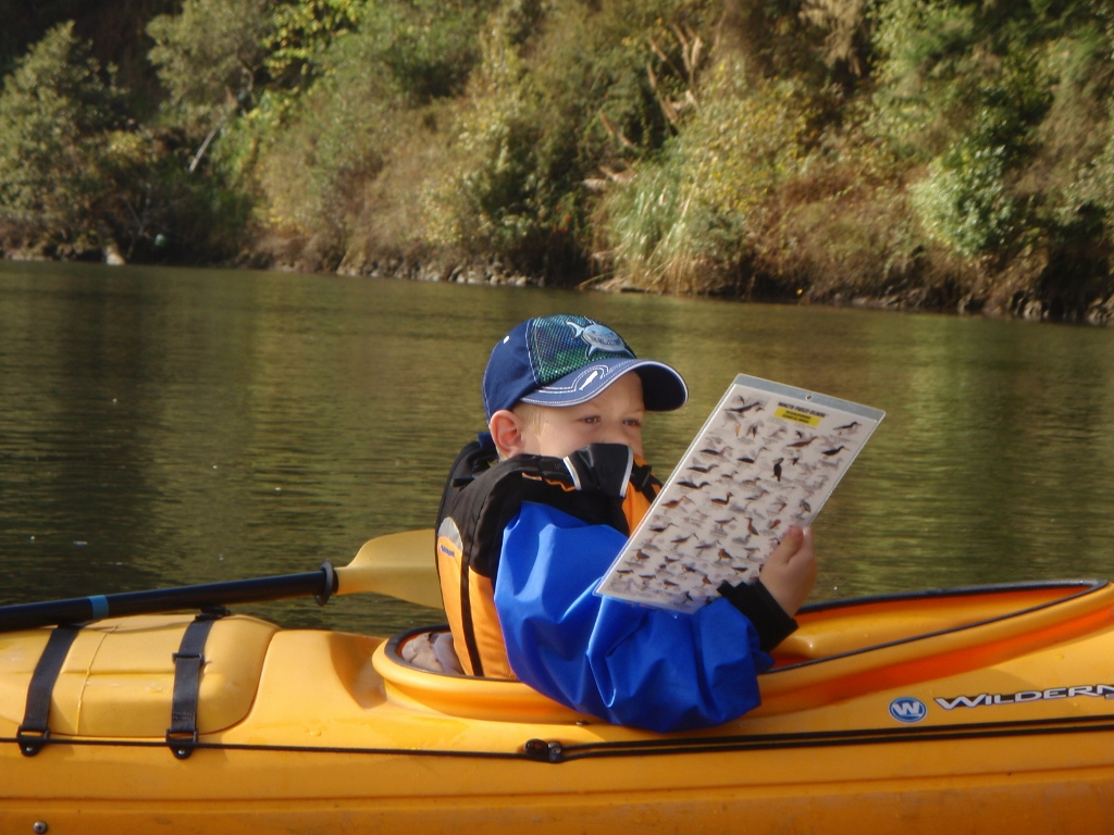 Kayak Birding Tour