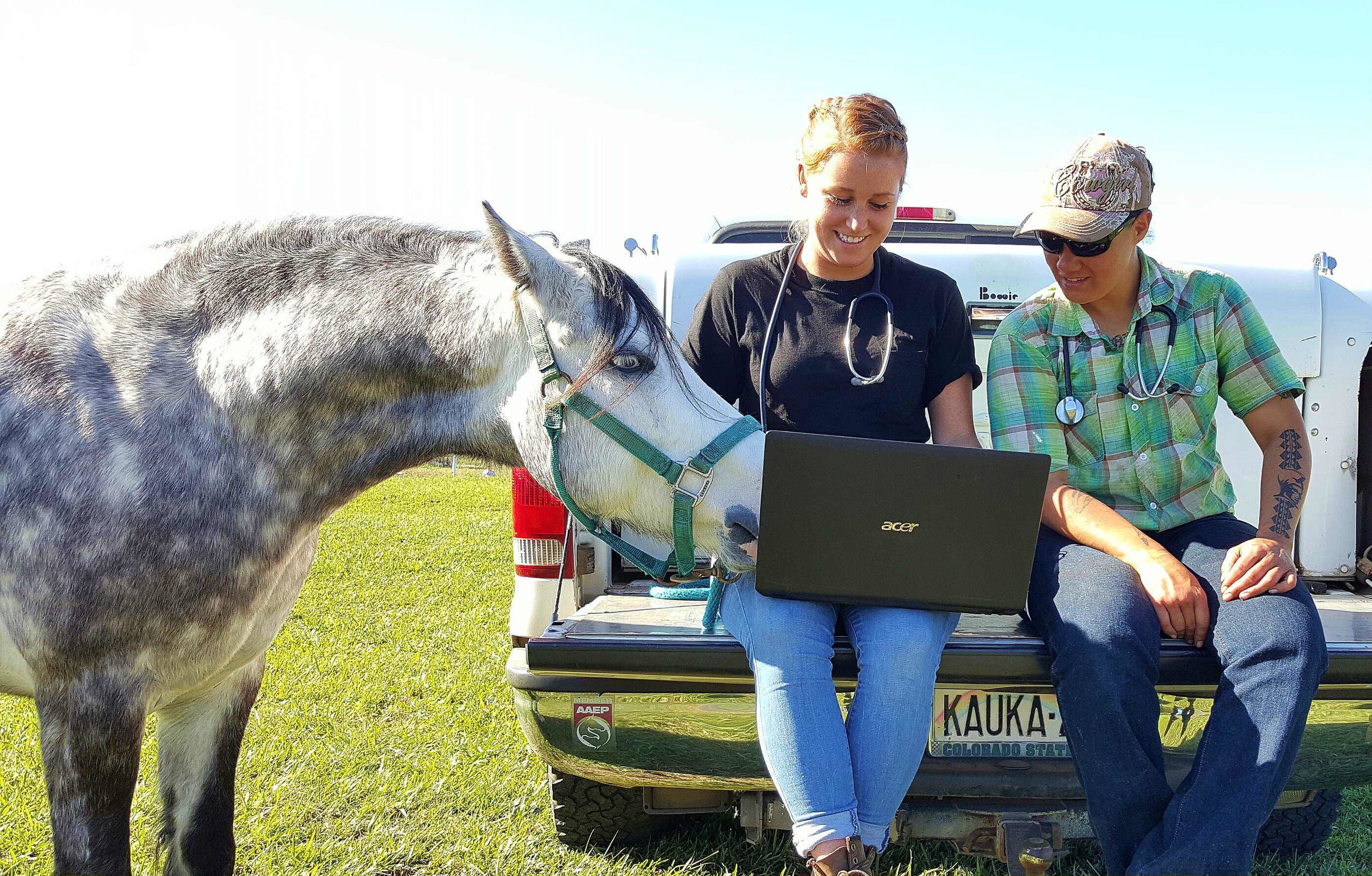 online vet tech RACE courses.jpg