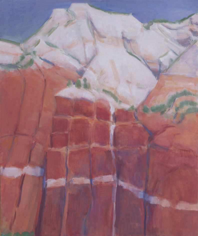 48.White and Red Sandstones, Zion National Park, Utah, 52 x 43 1990.web.jpg