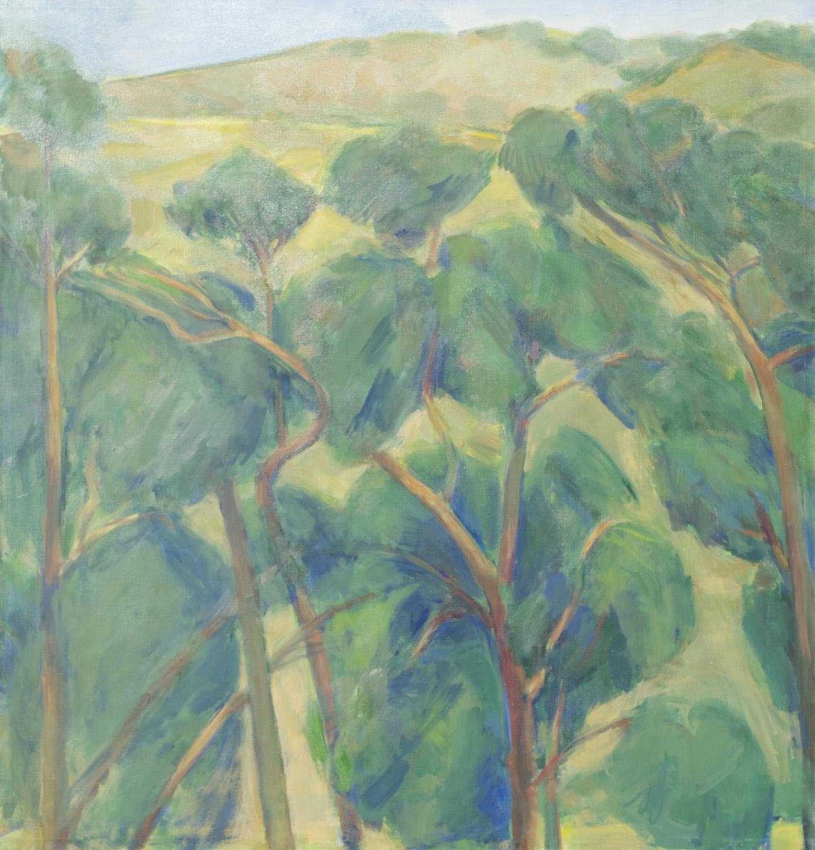 Eucalyptus Row and Coast Range, California