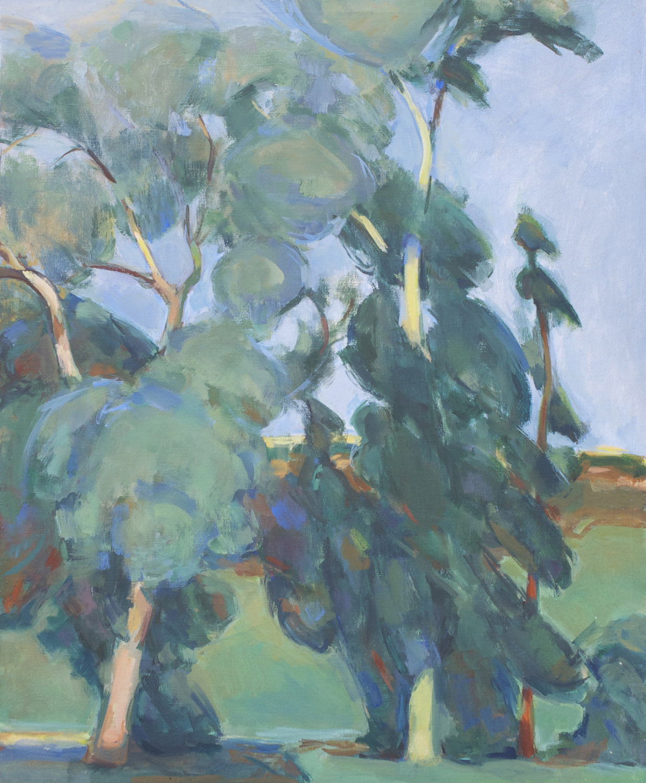 Three Eucalyptus Trees
