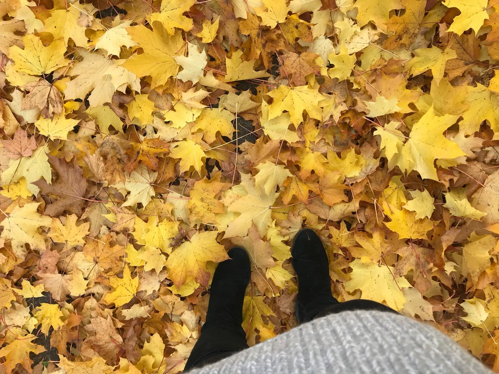 October.jpg
