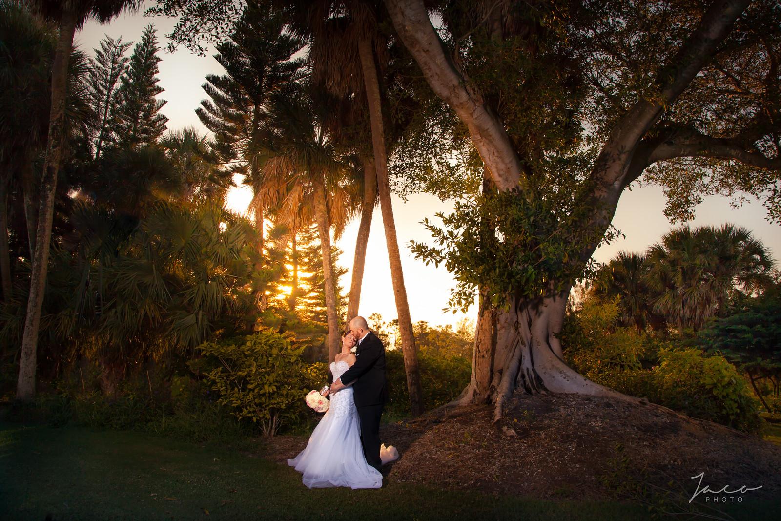 Mary and Jeff's Wedding 0831-X3.jpg