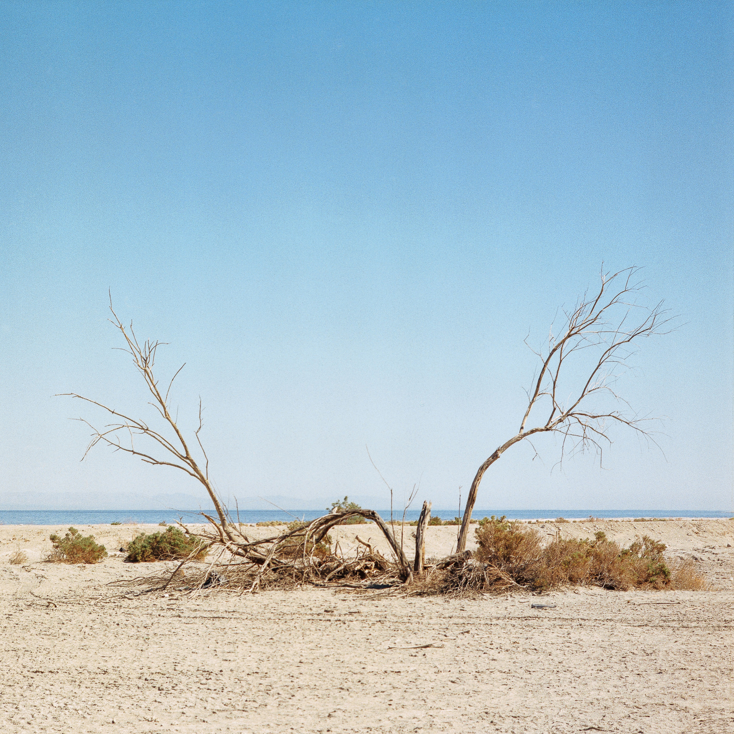salton sea web res-015.jpg
